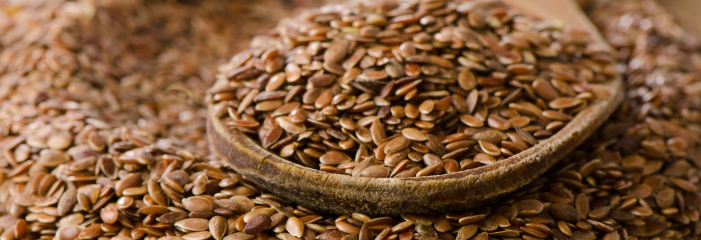In Mesothelioma Study, Flaxseed Diet Protected Mice Against Asbestos-Induced Inflammation