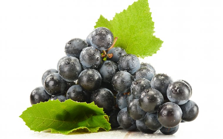 resistance to resveratrol-chemotherapy combo